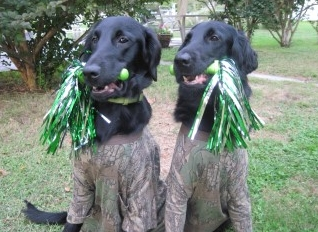 Gamekeepers Honor Roll